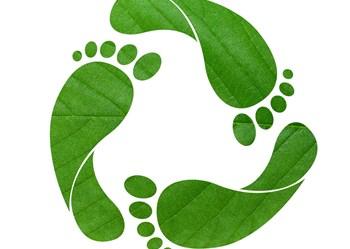 Green Footprint Shutterstock11